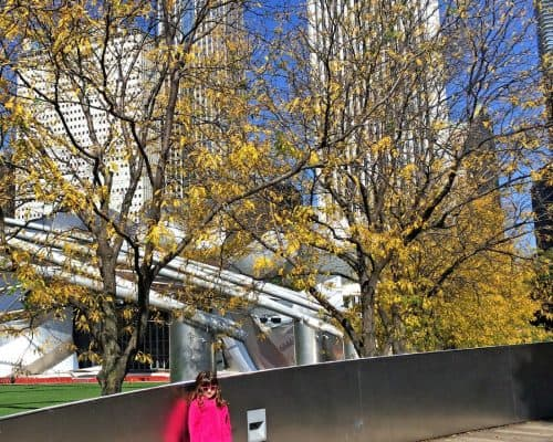 How to Plan a Weekend in Chicago - Chicago in the Fall Millenium Park