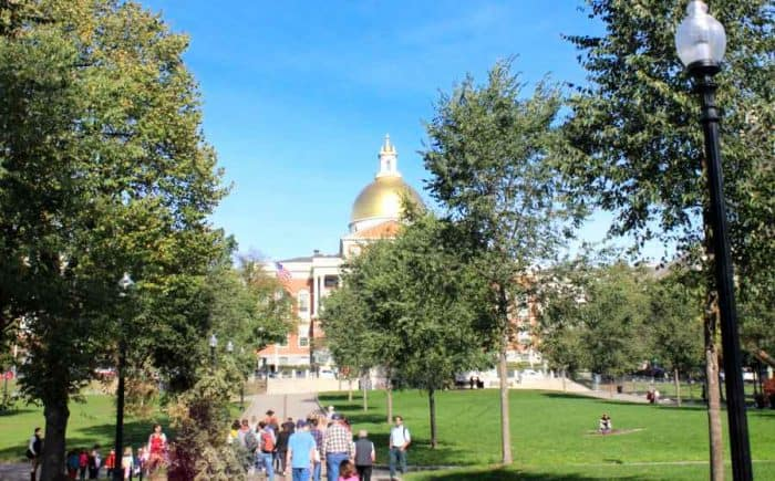 People walking on a cement path surrounded by green lawn and tall green trees making their way to a large, older building with bright gold dome