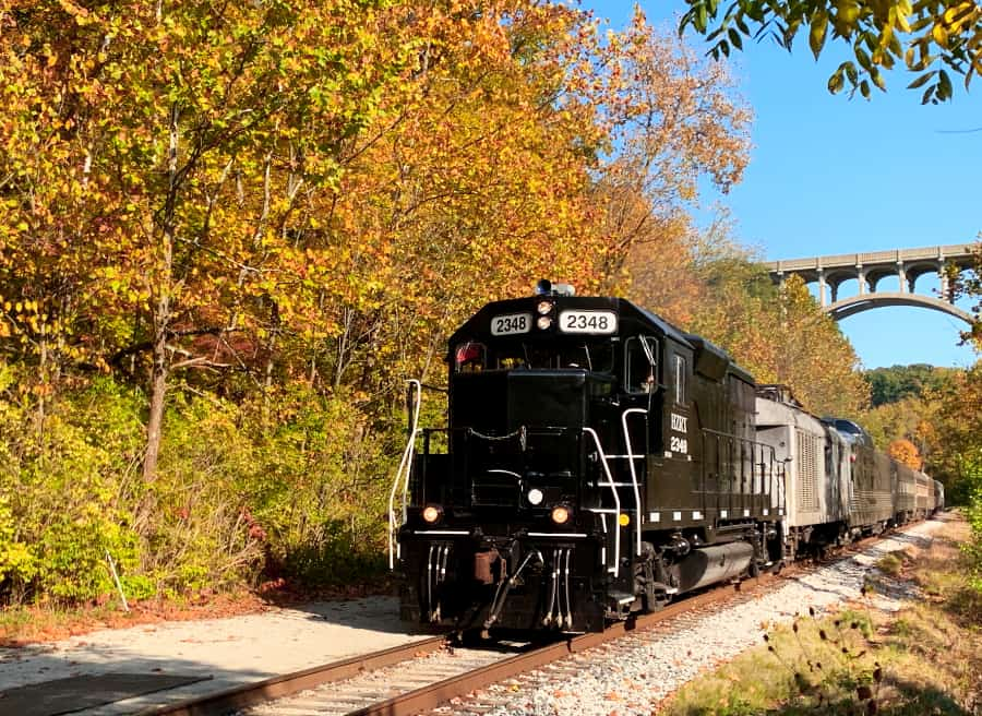Train cars approaching surrounded by trees changing color in the fall