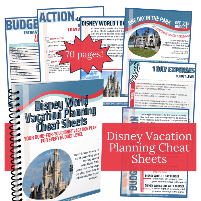 pictures of workbook pages for a Disney World planning cheat sheets book