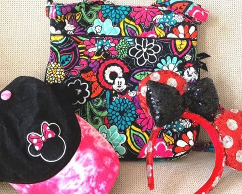 Red, pink, blue and green floral purse with Mickey Mouse face, hot pink and black baseball cap and red and silver Minnie ears on a beige background