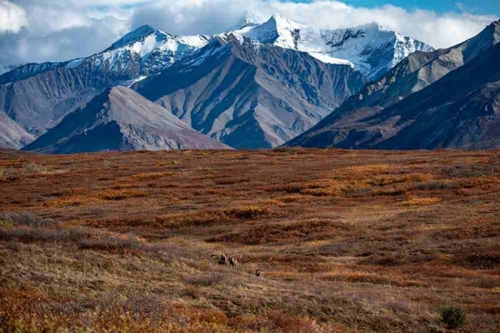 Snow capped mountains under white clouds with a brown prairie in the foreground.