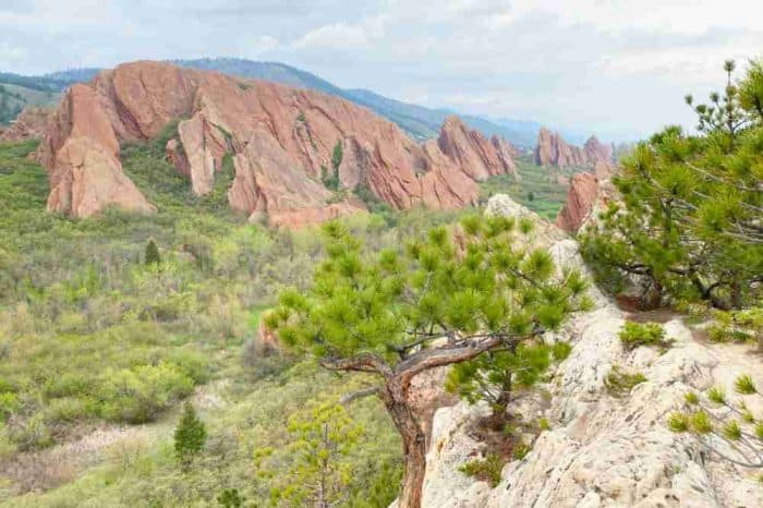 Jagged red rocks among green bushes and trees in Roxborough State Park in Colorado.