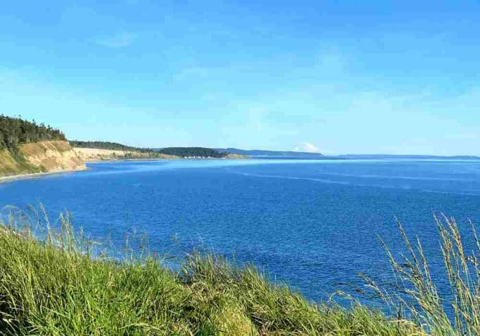 Gorgeous coastline of cliffs and grassy areas in Washington State under a bright blue sky.