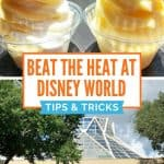 Top picture of two swirled ice cream dishes and bottom picture of The Land in Epcot with text overlay of how to beat the heat at Disney World