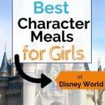 Cinderella's castle at Disney World behind a text overlay