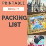 Disney pictures of an autograph book, packing essentials and Cindarella's castle