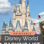 Cindarella's castle at Disney World