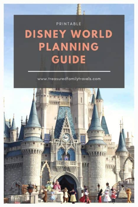 Cindarella's castle with Disney planning guide text