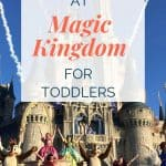Background of Cinderella's castle with characters dancing and fireworks. Text overlay on top.