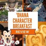Pictures of Mickey Mouse shaking maracas, a mickey head waffle, a blue costumed alien character and a Hawaiian tiki.