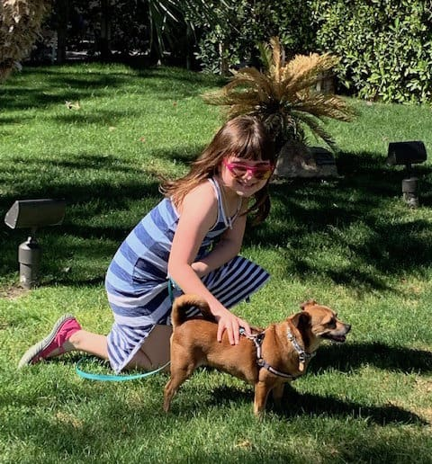 Girl bending down to pet little brown dog on a leash in the grass