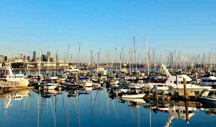 Large marina with boats of all sizes against a dark blue sky