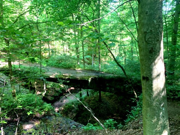 Bridge made from rock in the center of a green forest