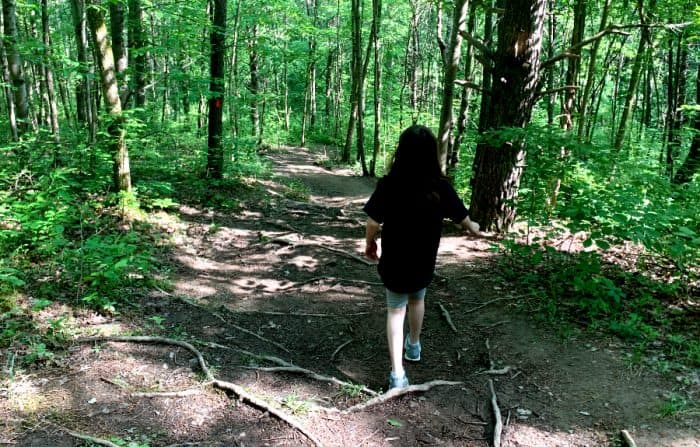 Young girl walking on a path lined with tree roots through a forest